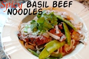 Helen Chen's Spicy Basil Beef Noodles