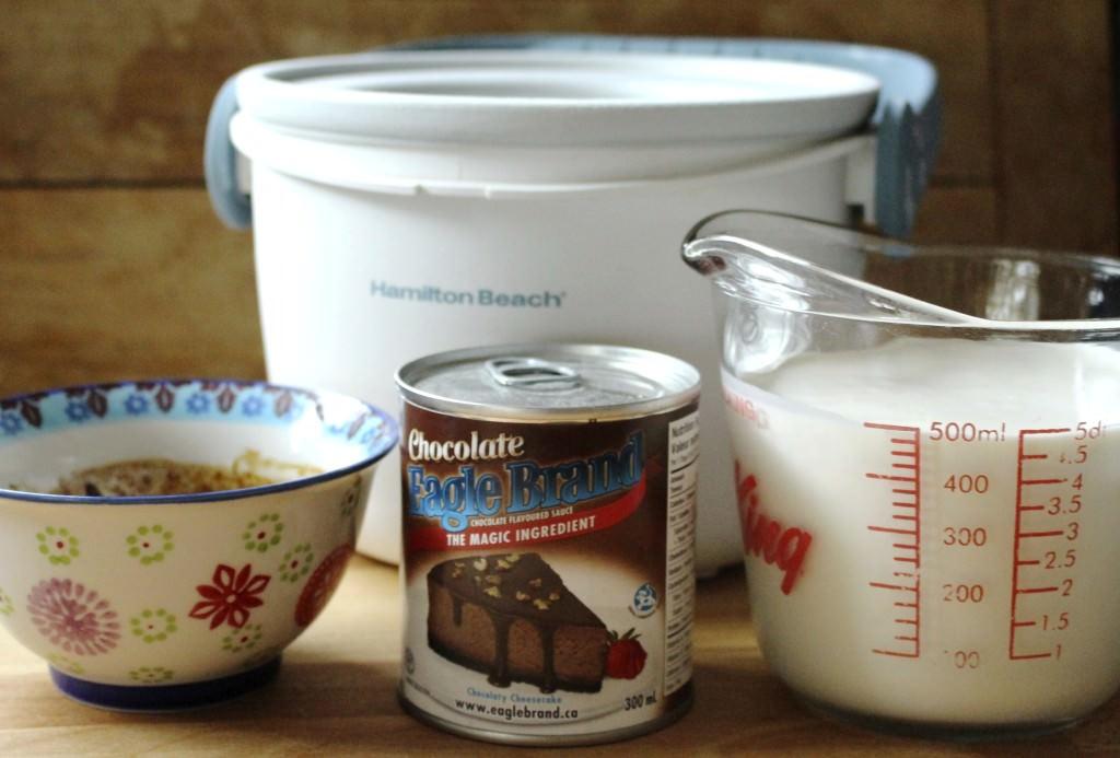 Simple Mocha Ice Cream